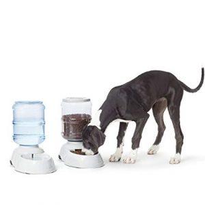 bebedero para perros grandes baratos