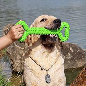 Juguetes para morder para perros grandes de color verde